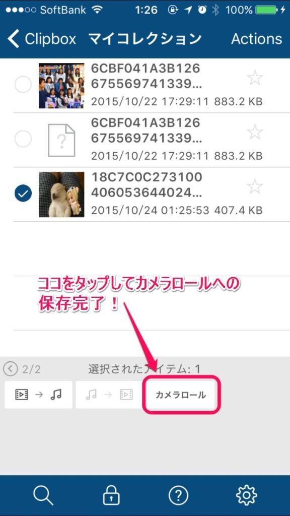 iPhoneのVine動画の保存方法