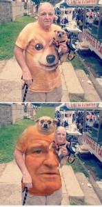 【電車内閲覧注意】フェイス・スワップ(顔交換)の画像がいずれも想像を超える面白さ【20枚】_おじいちゃんx子犬xTシャツ