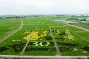 遠景_【画像あり】埼玉県行田市のドラクエの田んぼアートが想像を超えるクオリティで美しい