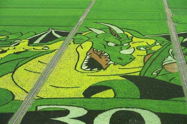 りゅうおう_【画像あり】埼玉県行田市のドラクエの田んぼアートが想像を超えるクオリティで美しい