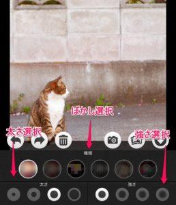 太さ、強さ_【iPhone用】画像にぼかし加工を行う無料のおすすめアプリ4選