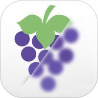 ぼかしアプリ_【iPhone用】画像にぼかし加工を行う無料のおすすめアプリ4選